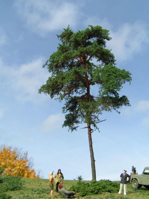 WEB Grove Den H0 18 cm